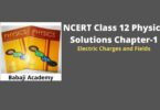 NCERT Class 12 Physics Solutions Chapter 1 - Electric Charges and Fields